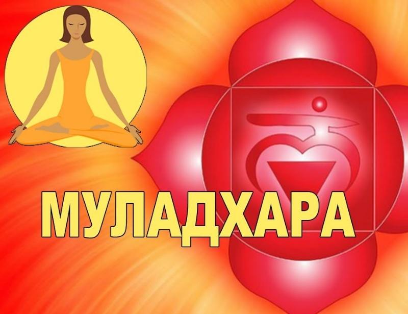 Первая — корневая чакра Муладхара